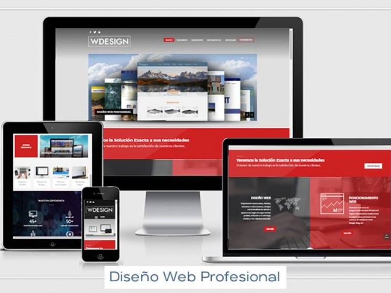 Desarrollo de páginas web Profesionales en Osorno - WDesign - Diseño Web Profesional