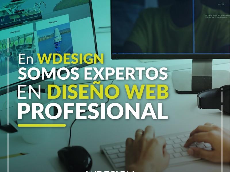 Empresa de Diseño Web Profesional Puerto Montt, Creaciones Paginas Web Puerto Montt. Actualiza tu sitio Web disenowebpuertomontt - WDesign - Diseño Web Profesional