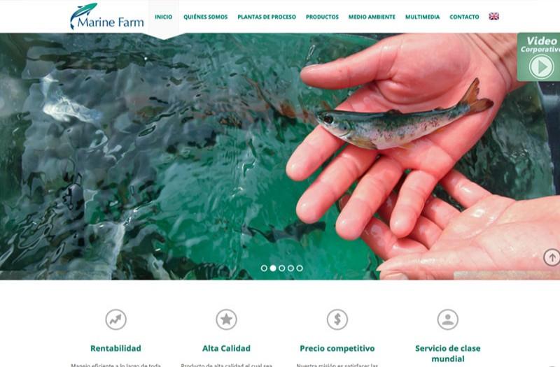 Marine Farm - WDesign - Diseño Web Profesional