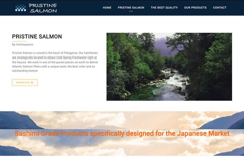 Pristine Salmon - WDesign - Diseño Web Profesional